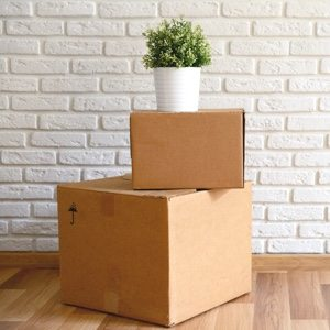 two brown boxes stacked with a potted plant on top in front of a white brick wall